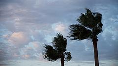 Irtózatos erejű lehet a Florida felé közelítő Dorian hurrikán