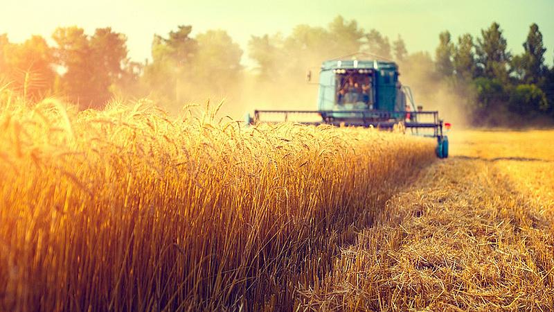 Itt a terv a magyar mezőgazdaság megsegítésére