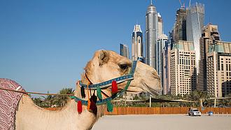 666 millió forinttal nőttek a dubaji világkiállításra szánt magyar pavilon költségei