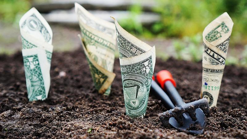 Befektetőket jutalmazott a kormány