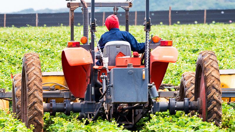 A tagállamok EU-s agrártámogatást igényelhetnek a szegények és menekültek integrációjára