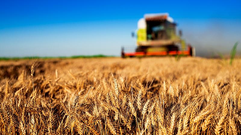 Mészáros megint nem járt rosszul - előrelépett az agrárbárók sorában
