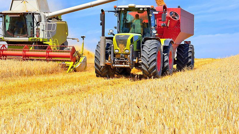 Jövő héten befejeződik az aratás