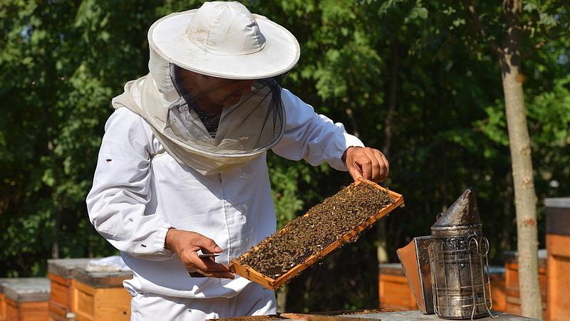 Drámai hír érkezett a magyar mézről