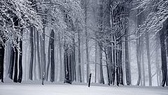 Tíz megyében lesz nagyobb havazás - mutatjuk a részleteket