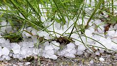 Hatalmas károkat okoz a tavaszi fagy a mezőgazdaságban: itt a támogatás