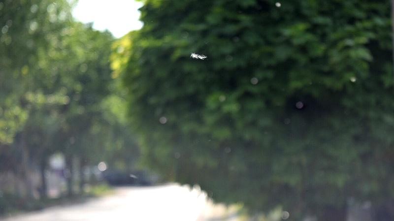 A klímaberendezések segíthetnek az allergiásokon