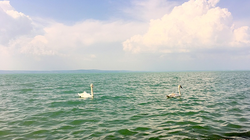 Vegyes hírek érkeztek a Balatonról