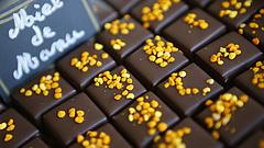 Drágállja a csokoládét? Köszönje meg a Terminátor kistestvéreinek!
