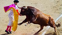 Tüntetés volt a bikaviadalok ellen