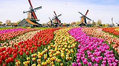 Jelentősen megugrott a koronavírus-fertőzöttek száma a Benelux-országokban