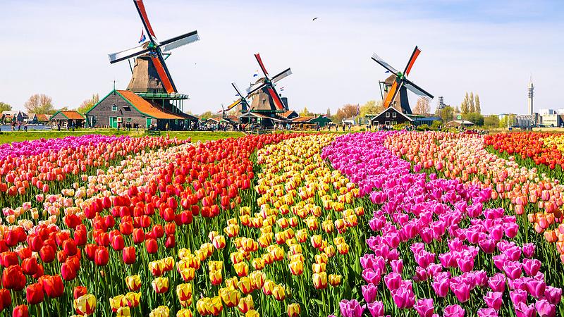 Amszterdamban is odacsapnak az idegesítő turistáknak