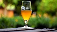 Itt a lista - ezek a legjobb világos sörök a Nébih szerint