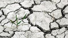 A klímaváltozás miatt aggódik az agrárminisztérium