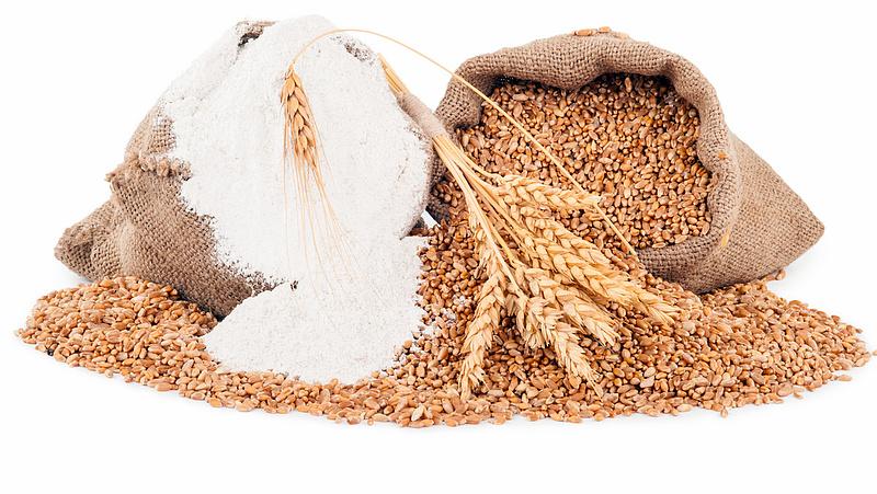 Kevesebb a búza - elszállhat a kenyér ára