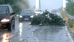Százmilliókat várnak a viharok maitt a biztosítóktól