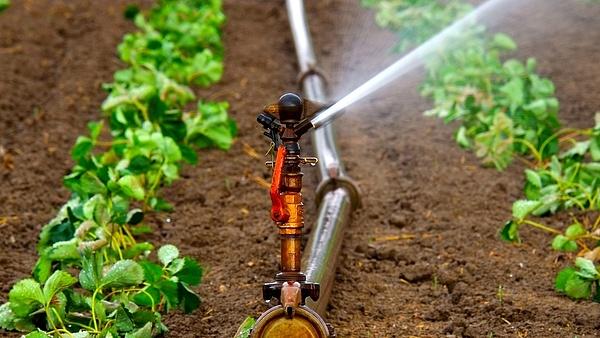 Brüsszelből nem tudják megállítani a mezőgazdaság vízpazarlását