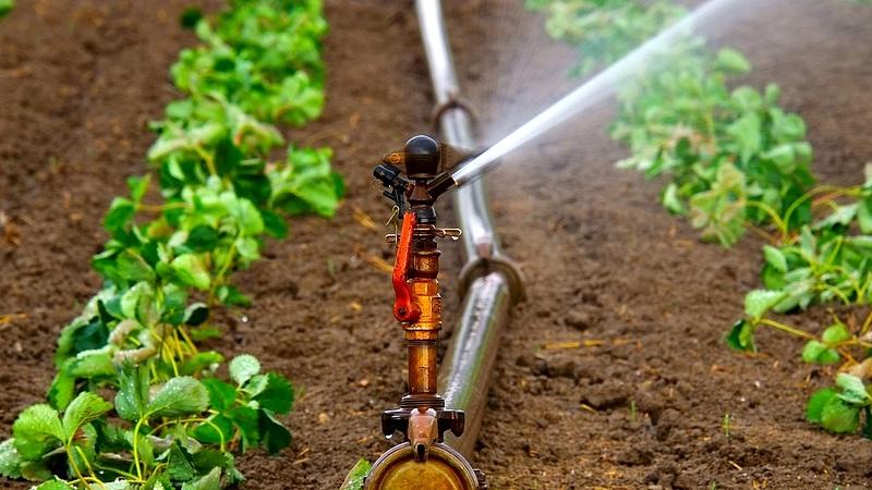 Így terjed az öntözéses gazdálkodás