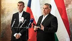 Babis Afrika-tervét támogatja a magyar kormány is