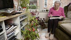 Fontos döntés született az özvegyi nyugdíjról