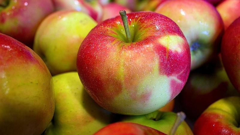 Elönti az alma Szekszárdot