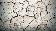 Klímaváltozás: erős kijelentést tett az ENSZ főtikára