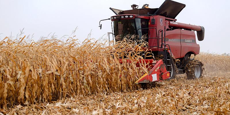 Autósok, figyelem: traktorok, kombájnok miatt int óvatosságra az utakon az agrárkamara