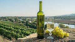 Kézfertőtlenítőt csinálnak az eladhatatlan francia borból