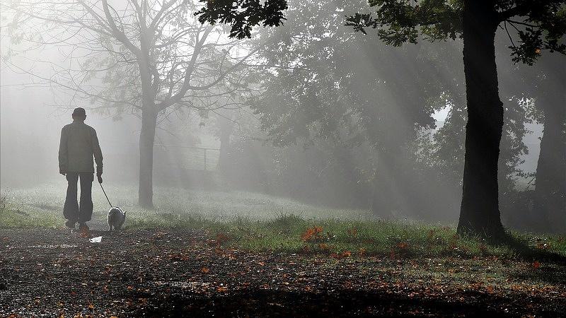 Időjárási fordulat készül az OMSZ szerint - sarki levegő zúdul be
