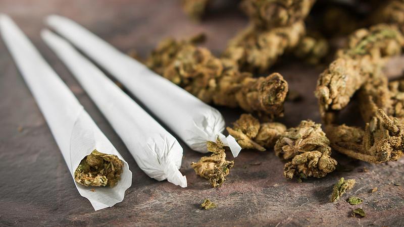 Érkezik Európa első marihuánás alapja