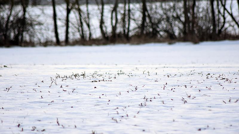 Érkezik a havazás délután, de nem mindenhol