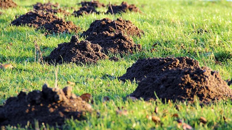 A kormány megszüntetné az osztatlan közös földtulajdont