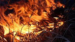 Gyújtogatás okozhatta a nagy balatoni tüzet