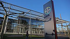 Ismét rákkeltőnek ítélték meg a Bayer gyomirtóját