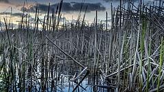 Újra kellene gondolni a Balaton vízpótlási koncepcióit