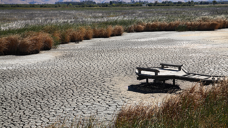 Globális felmelegedés: egyre nagyobb a veszély