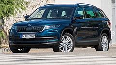 A nagycsaládosok uralják a magyar autópiacot