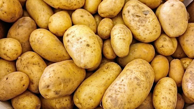 Bocsánatot kért a krumpli a Tescóban, mert nem szép
