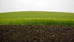 Bővül Mészáros agráruradalma
