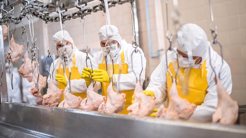 Koronavírus: iszonyatos húsárak jönnek