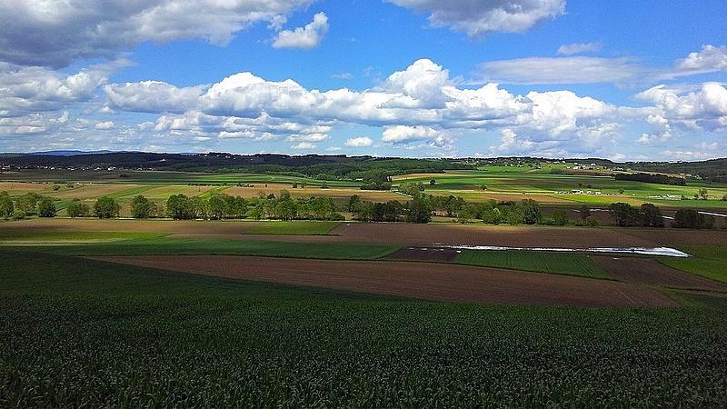 Bejött a bioüzlet - így gazdálkodnak az Esterházyak