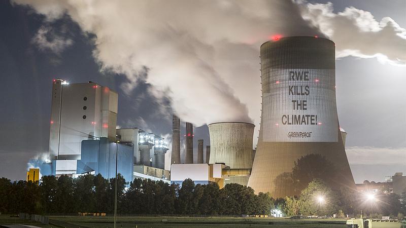 """""""Nincs más alternatíva: a szénerőművet be kell zárni, az erdőt pedig érintetlenül kell hagyni"""""""