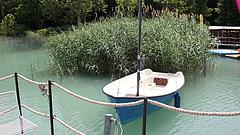 Óriási árvaszúnyograjzás jöhet jövőre a Balatonnál