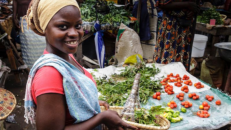 Mintafarmokat létesítünk Afrikában