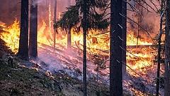 Rendkívüli állapotot vezettek be Szibériában