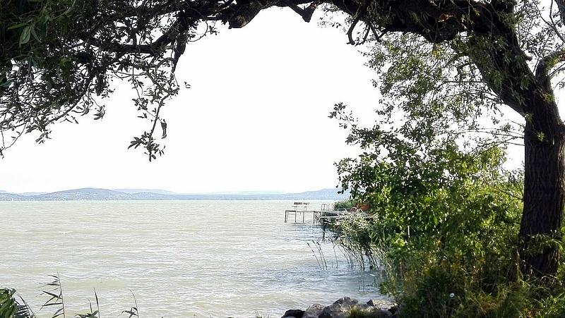 Természetpusztítás a Balatonnál - lesújtott a hatóság Akaliban