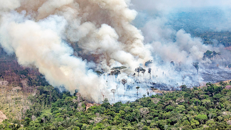 Százmillió dolláros befektetési alappal mentenék Amazóniát