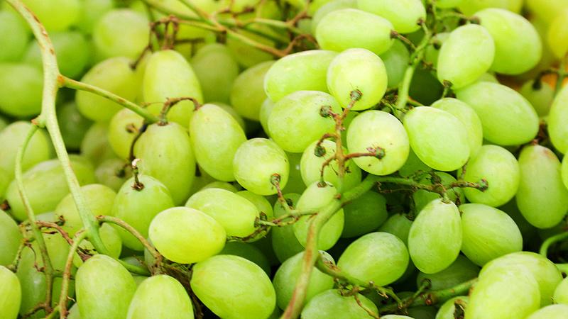 Bajban vannak a soproni bortermelők
