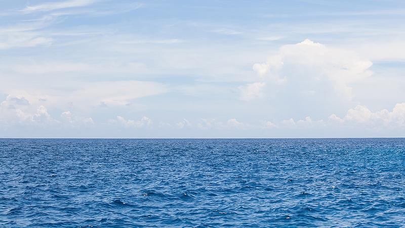 Új védelem kell az élővilágnak az Atlanti-óceánon