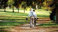Öt dolog, amit érdemes megtenni a nyugdíjasok online biztonságáért